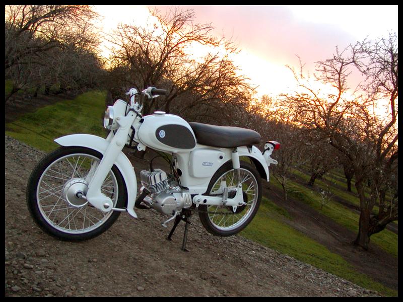 1964 Yamaha YJ1 Riverside 55